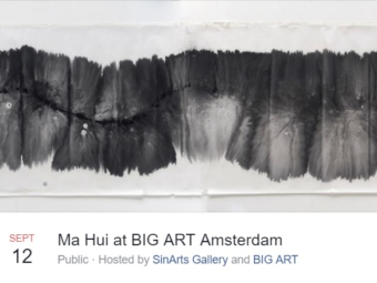 BIG ART Zaandam
